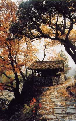 Истина и стратегия; итоги поездки в Веньчжоу